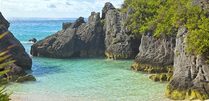 Surround yourself with natural beauty at Jobson's Cove.