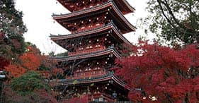 美しい寺院と庭園
