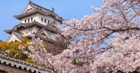 Kyoto (Osaka), Japan