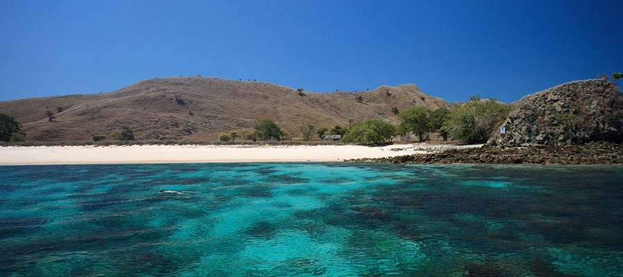 Pink Beach on Komodo Cruises