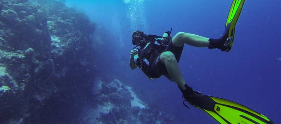 Dive below the legendary blue waters while in Bonaire
