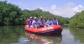 Eco Cruise by RIB at Lac Bay