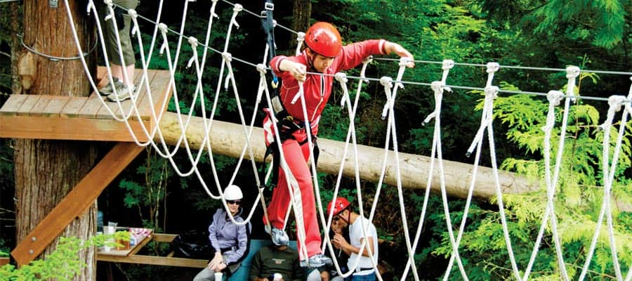 Zip Challenge on your Alaska cruise