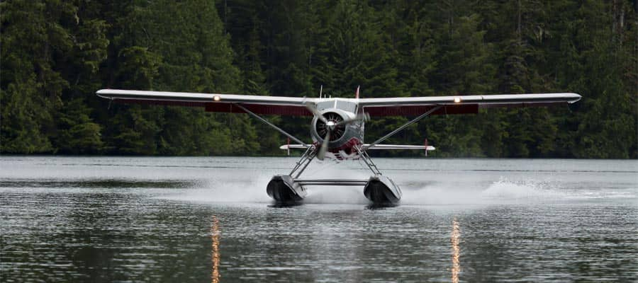 See Alaska on a Sea Plane on your cruise holiday