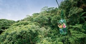 הרפתקת רכבת אווירית ויער הגשם