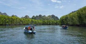 Aventure grotte et mangrove