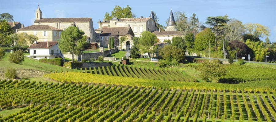 Vineyards of Saint Emilion in Bordeaux
