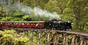 Best of Melbourne – Puffing Billy, Nature & Wine