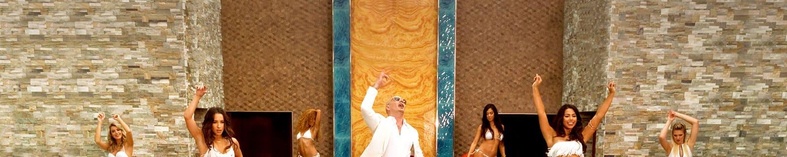 MI.Pitbull