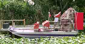 Le Everglades in airboat - Aeroporto Internazionale di Ft. Lauderdale