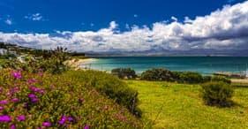 Highlights von Mossel Bay