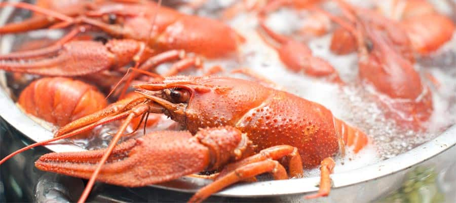 Try a crawfish boil on your New Orleans cruise