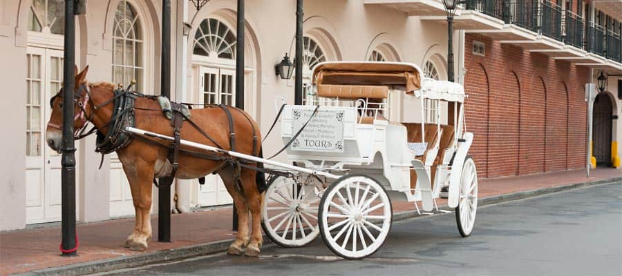 Travel on a horse drawn carriage on your New Orleans cruise