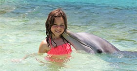 Dolphin Encounter, Beach Day & Snorkel