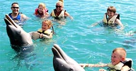 Blue Lagoon Dolphin Swim & Beach Day