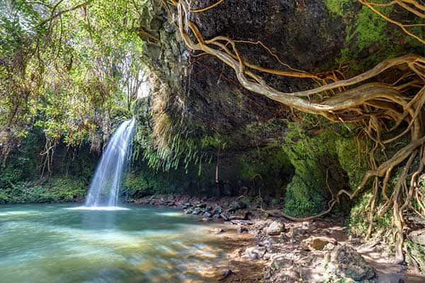 Visit Twin falls on your Hawaii cruise