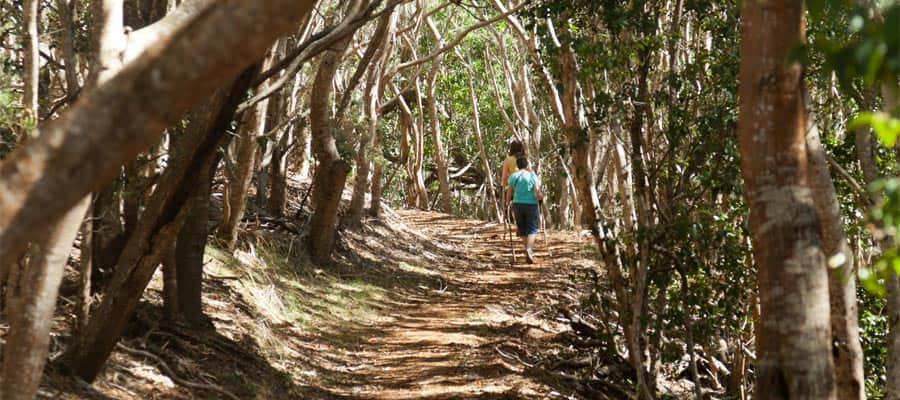 Hiking on Hawaiian cruises