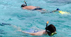 Sea Fun Beach Snorkel