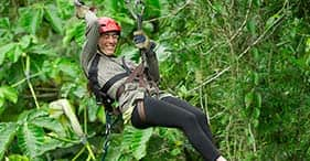 Tree Top Zipline Adventure