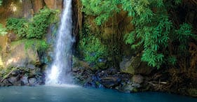 Jewels of Hawaii - Waterfall & Tropical Gardens