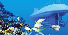 Atlantis Submarine & Lahaina On Your Own