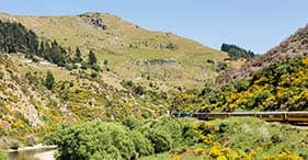 The Taieri Gorge Railway Experience