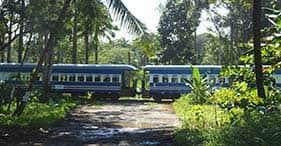 Pacific Train, Bus & Boat Adventure