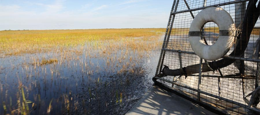 Ride an airboat in Orlando before your Caribbean cruise