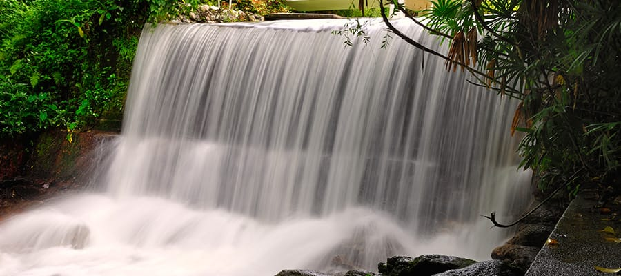 Visit the waterfall at Penang Botanical Garden when you cruise to Penang