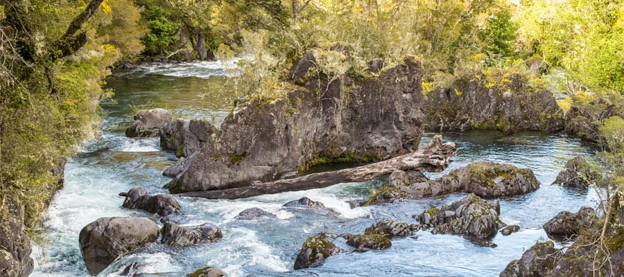 Visit River Petrohue on your Puerto Montt cruise