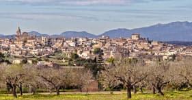 A miscelânea de Mallorcan