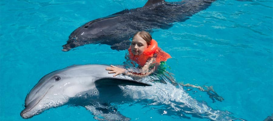 Dolphin Encounter on Puerto Vallarta cruises