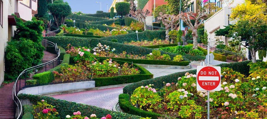 Cruise to San Francisco and see Lombard Street