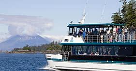 מסע צפיה בלוטרות ים וחיות בר