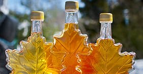 Maple Sugar Shack & Tasting