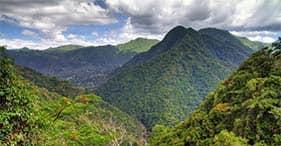 Promenade dans la forêt tropicale El Yunque avec transfert à l'aéroport
