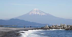 富士山の眺め/茶道体験/美術館