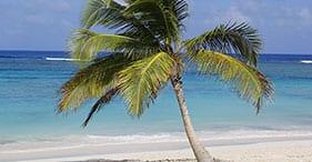 Exclusive Abi Beach Getaway