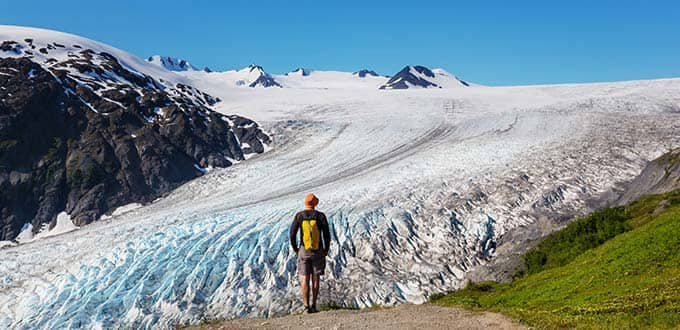 seward alaska exit glacier alaska sealife center excursion