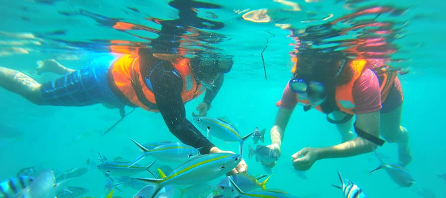 Dive into adventure on your Sanya cruise