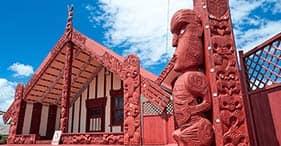 タウランガやマオリ文化のハイライト