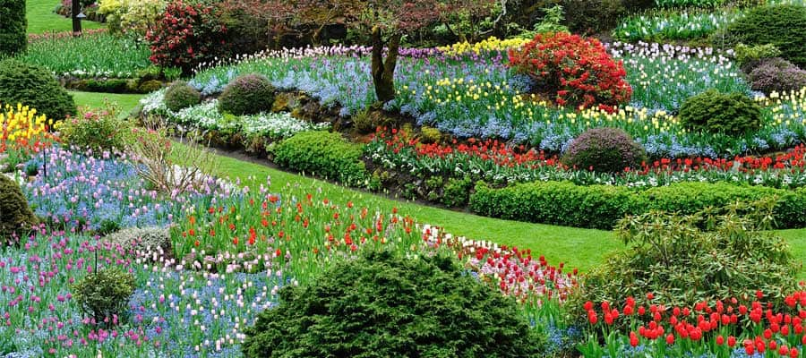 Beautiful Butchart Gardens on your Victoria cruise
