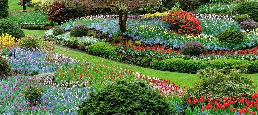 Os belos jardins de Butchart no seu cruzeiro em Victoria