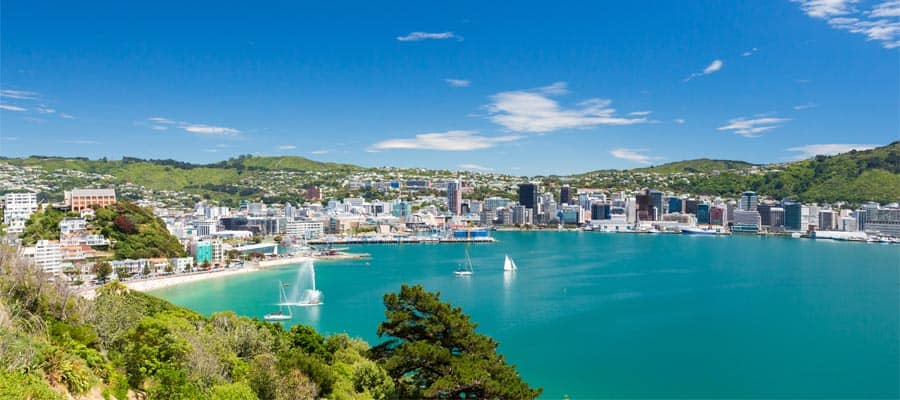 Vista dal Mount Victoria in una crociera a Wellington