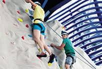 Rapelling Wall