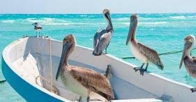7-Day Western Caribbean, Round-trip Miami