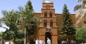 Discover the Town of Todos Santos