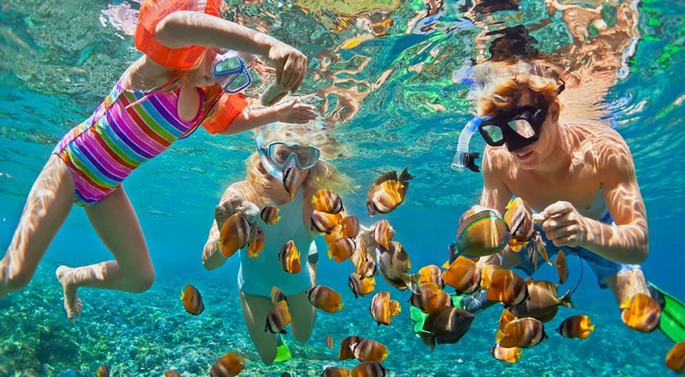 Hawaii Cruise family activities