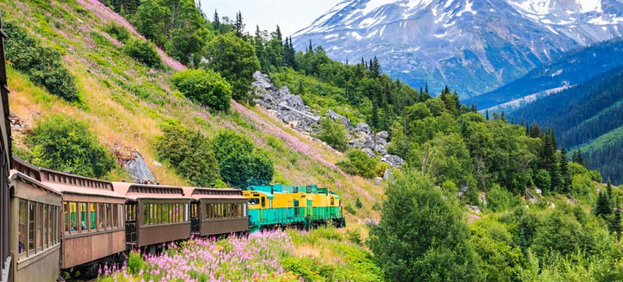 12-Day Denali by Rail Explorer - Northbound Cruisetour
