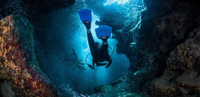 Dive into the warm waters of Grand Cayman